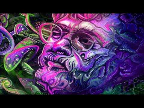 Terence Mckenna   Simplification of Reality