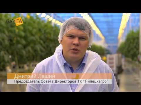 Customer profile - Липецкагро / Lipetsk Agro