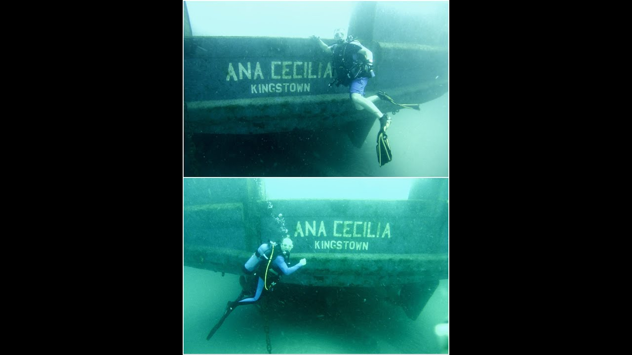 Ana cecilia wreck dive off palm beach 8 13 2016 hd youtube ana cecilia wreck dive off palm beach 8 13 2016 hd xflitez Images