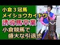 小倉三冠馬メイショウカイドウ、小倉競馬で盛大な引退式