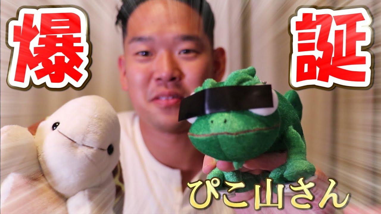 新パペット系爬虫類YouTuber爆誕!?【亀山さん&しょんたむコラボ】