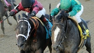 Derby Dreams: Honor Code and Cairo Prince