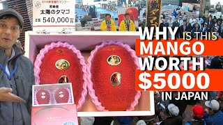 $5,000 Mango at Auction ー but WHY? ★ ONLY in JAPAN