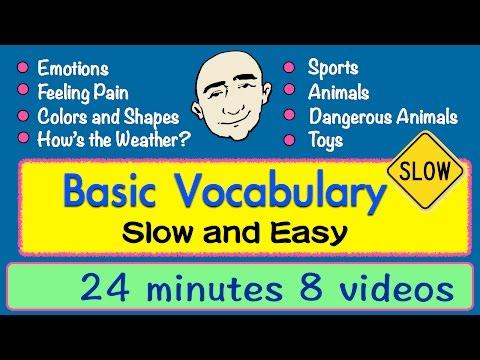 Basic Vocabulary Collection -  emotions, animals, our body + more | Mark Kulek - ESL