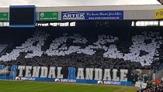 FC Hansa Rostock vs SpVgg Unterhaching/ 09.02.2019/ Choreo & Support