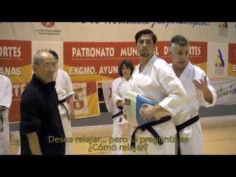 DOCUMENTAL  DE AIKIDO Y KARATE DO