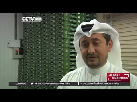 Qatari farmers find innovative ways to produce fertile soil