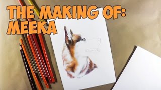 Siberian Husky Speed Drawing