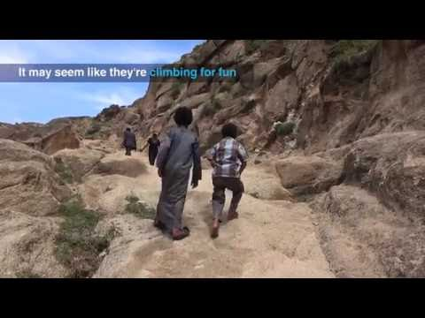 The deterioration of healthcare in Yemen
