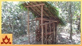 Primitive Technology: Wood shed and Native bee honey