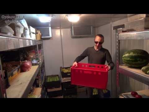 Хранение продуктов по санпину в холодильнике