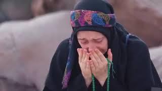 فيلم مشاعر المشاعر الحج مزيج من الحب والبذل والطهر والسلام