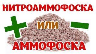 Комплексные удобрения: Нитроаммофоска и Аммофос. Плюсы и минусы