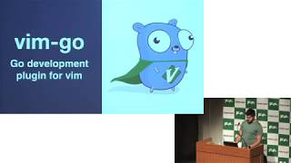 [English] The Past and Future of Vim-go
