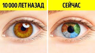 Раньше у людей был только один цвет глаз