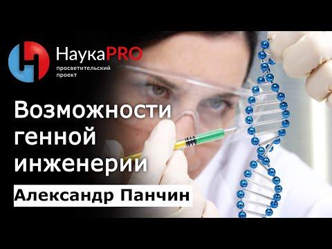 Александр Панчин - Возможности генной инженерии