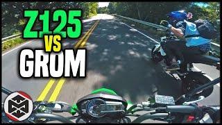 HE BEAT ME   First Ride - Kawasaki Z125 vs Grom
