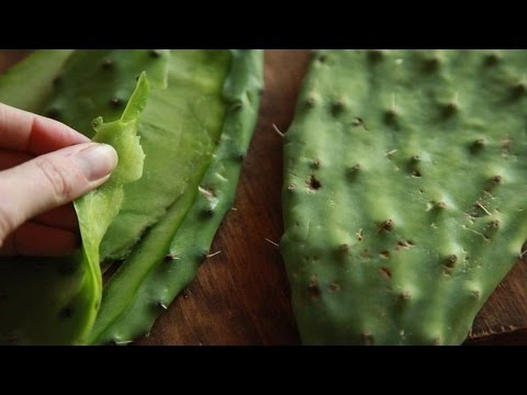 7 Benefits Of Eating Cactus Leaf That You Did Not Know Before