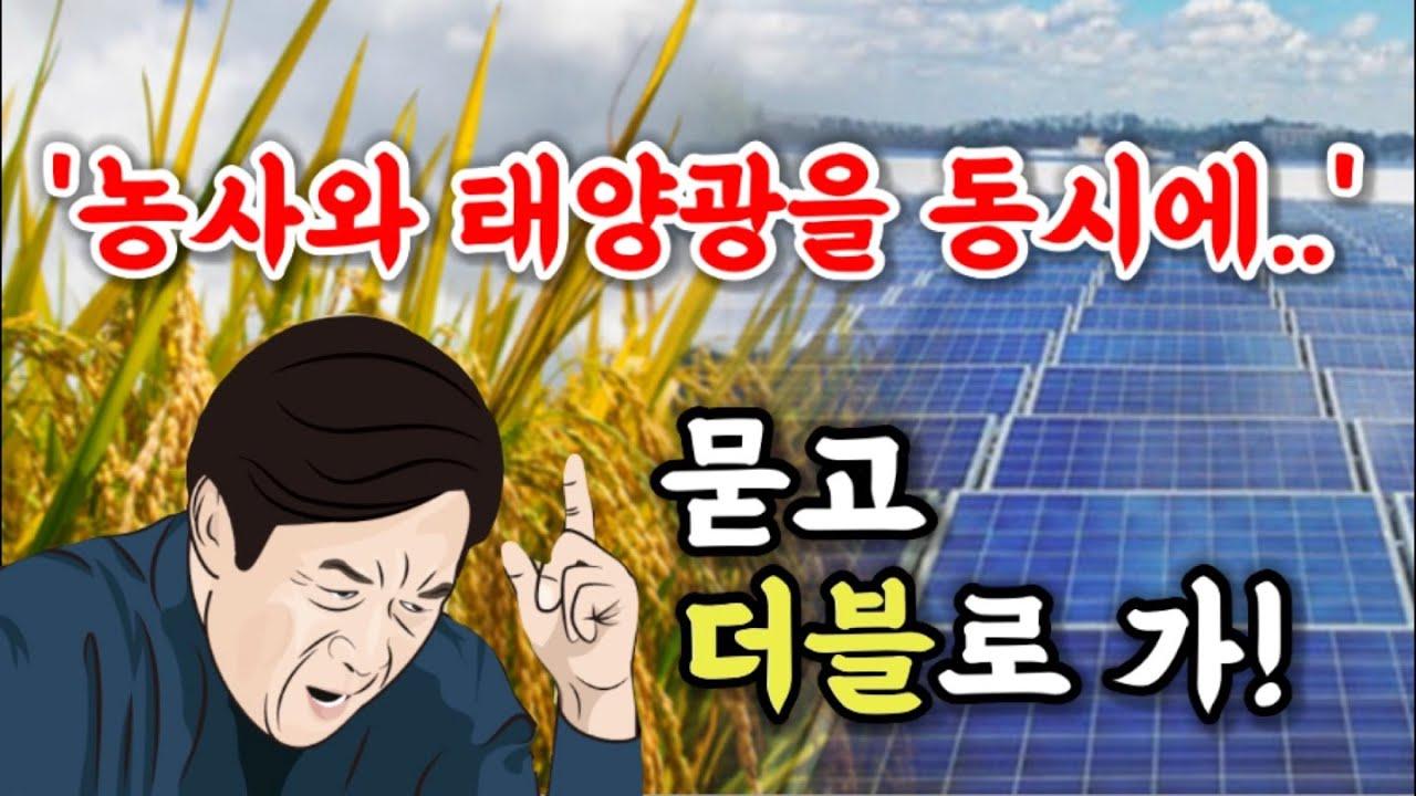 '농촌 그린뉴딜..' 영농형 태양광 발전소 도입이 시급한 이유는?