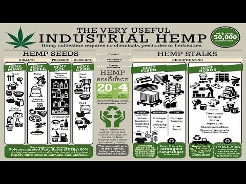 Industrial Hemp Solutions