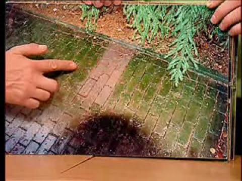 Moosentferner der biologische moosentferner von ago doovi for Algen entfernen hausmittel