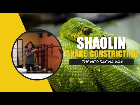 Shaolin Snake Constricting | Kung Fu Training Question