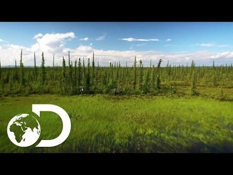 The Last Alaskans | Extended Trailer