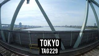 Abschied nehmen - Tag 229 - Tokyo - Weltreise