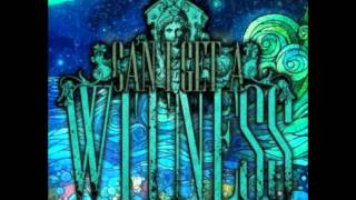 Witness The Wildfire - One Night Stand