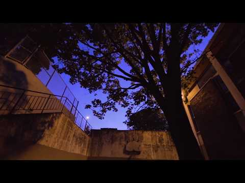 Keys N Krates - Flute Loop (feat. Ouici) | Dim Mak Records