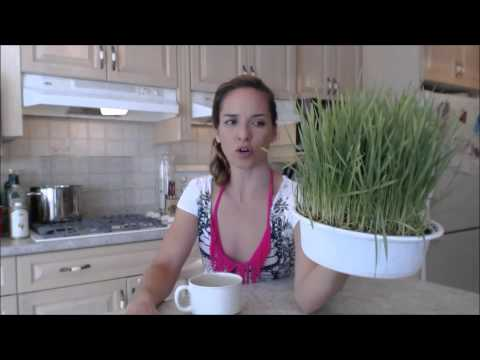 Organic Wheat Grass Living Greens by Sprouts for Life: What I Say About Food
