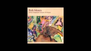 Trevor: Bob Moses from the album When Elephants Dream Of Music