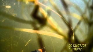 видео Озеро Сунгуль, Челябинская область: описание, фото