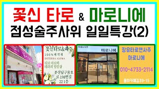 줌마술 : 부산 꽃신타로 & 김해 마로니에 점성술주사위 일일특강(2)- 별자리 천칭자리~물고기자리 설…