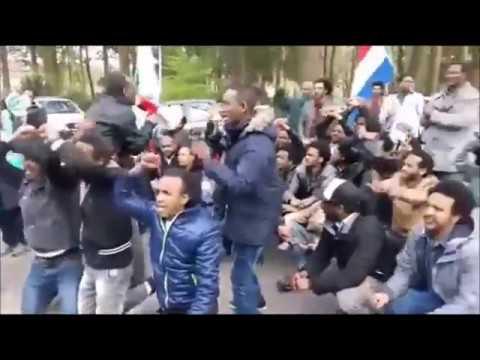 ክቝነና ዝመጽኣ ተላጽየን ይምለሳ! - Eritrean Justice Seekers Stop YPFDJ Conference in Holland