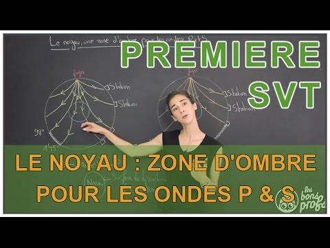 Le noyau zone d 39 ombre pour les ondes s et p svt 1 re s les bons profs youtube - Le sel et les ondes negatives ...