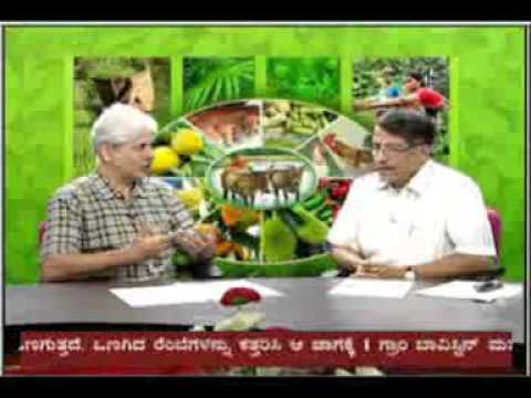8 09 2015 live phone in programme