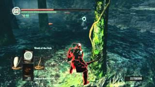 Dark Souls: First PS3 Hacker