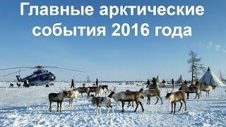 Главные арктические события 2016 года