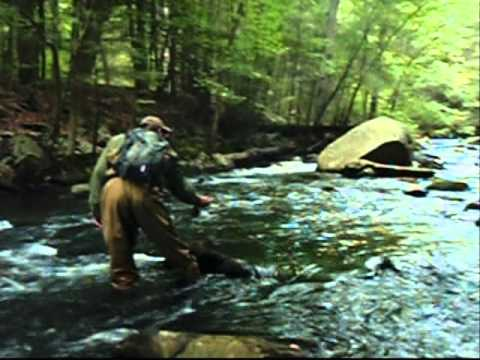 Catskill Fly Fishing
