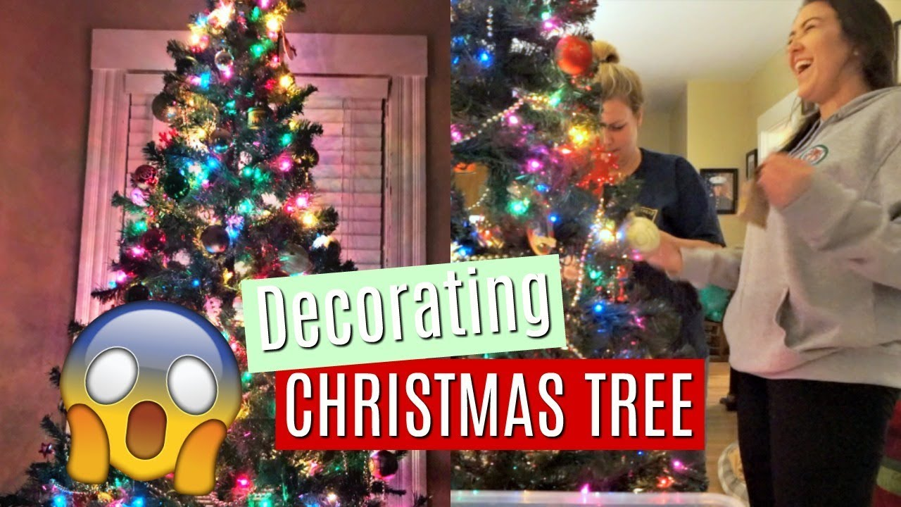 decorating a christmas tree in november is it too early daily college vlog kenzie borowski