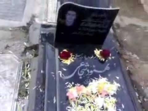 Iran Behesht Zahra Behnood Shojaei's Grave