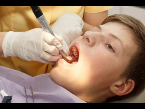 Dentist Near Me | Schedule a Dentist Appointment