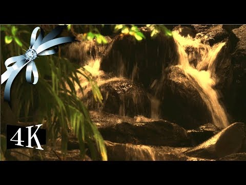 """♬ water sounds for sleeping ♬ nature healing video """"Like a rock under a waterfall"""""""