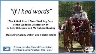 If I Had Words: Suffolk Punch Trust Wedding Dray