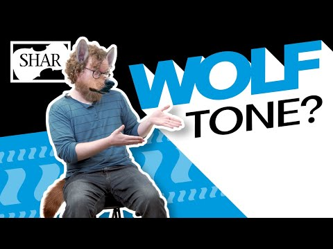 How To Find And Fix A Wolf Tone