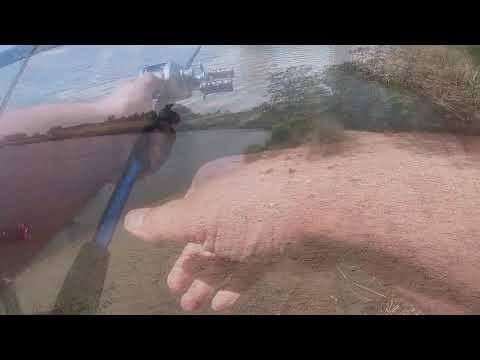Fishing In Richland Washington
