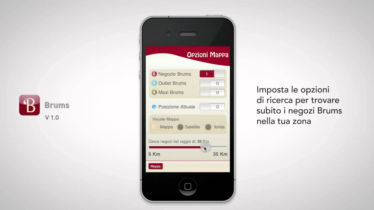 Ricerca Per Immagini Mobile brums - application overview