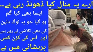 Minal Khan Searching For What | Aineeb  Walima | Aiman khan And Muneeb Butt Walima Ceremony