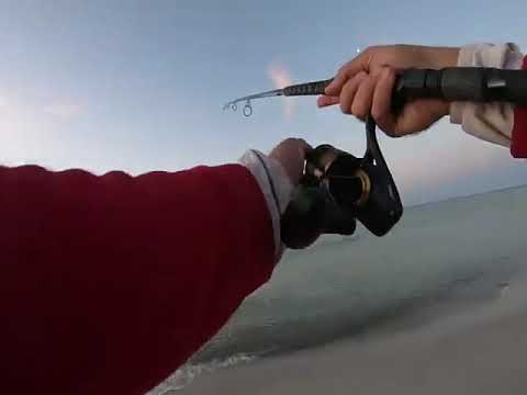 how to surf fishing PowerAngling